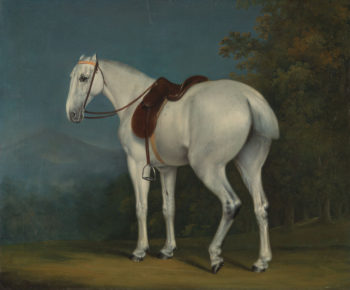 Grey Hunter | Jacques Laurent Agasse | oil painting