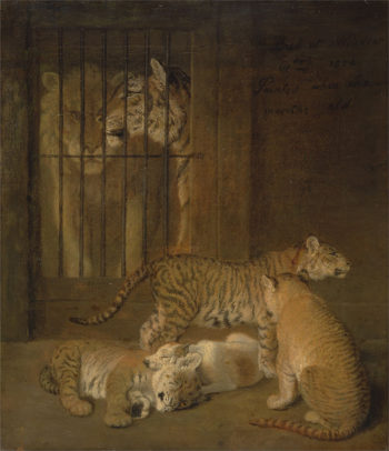 Group of Whelps Bred between a Lion and a Tigress | Jacques Laurent Agasse | oil painting