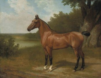 Hunter of Lord Bingley in a wooded river landscape | Jacques Laurent Agasse | oil painting