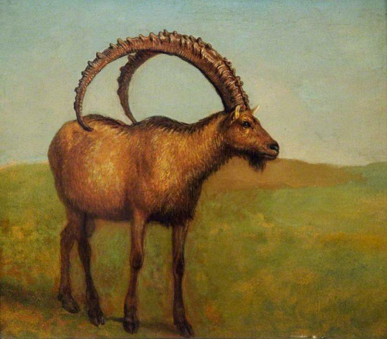 Ibex landscape | Jacques Laurent Agasse | oil painting