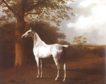 White Horse in Pasture | Jacques Laurent Agasse | oil painting