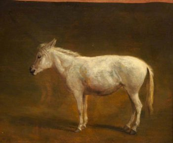 White Mule | Jacques Laurent Agasse | oil painting