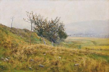 A Shrub   Frantisek Kavan   oil painting