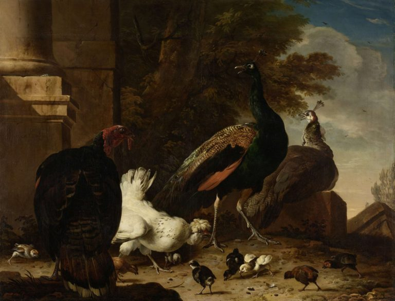 A Hen with Peacocks and a Turkey. ca. 1680 | Melchior d' Hondecoeter | oil painting