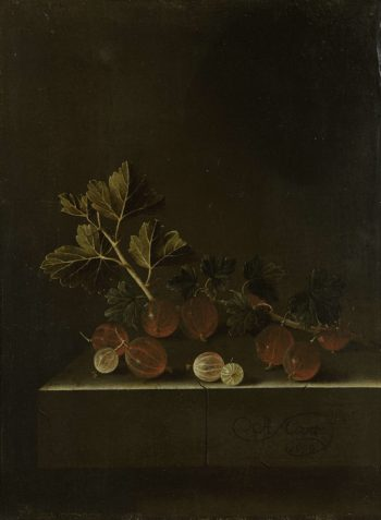 A sprig of gooseberries on a stone plinth. 1699 | Adriaen Coorte | oil painting