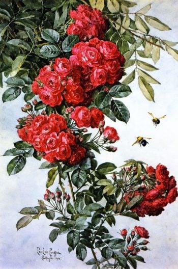 Rambling Roses | Raoul de Longpre | oil painting