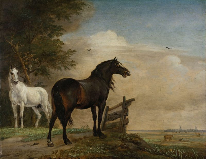Two Horses in a Meadow near a Gate. 1649   Paulus Potter   oil painting