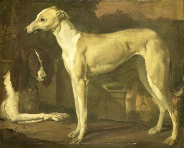 Portrait of a greyhound and a spaniel. 1665 - 1680 | Jan Weenix | oil painting