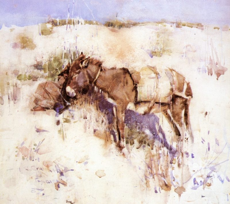 Donkey Tangier | Joseph Crawhall | oil painting