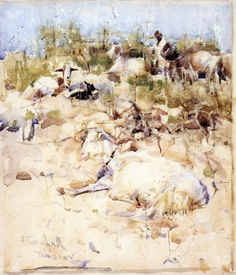 Goats on a Hillside Tangier | Joseph Crawhall | oil painting