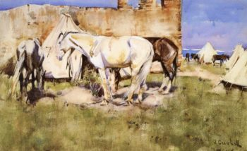 Picketed Horses Tangier | Joseph Crawhall | oil painting