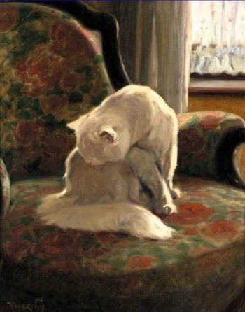 Cat Washing Its Coat | Arthur Heyer | oil painting