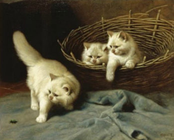 White Angora Kittens With a Beetle | Arthur Heyer | oil painting