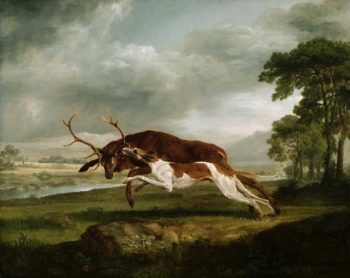 Hound Coursing a Stag | George Stubbs | oil painting