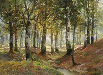 Sunlit Woodland | Karl Vikas | oil painting