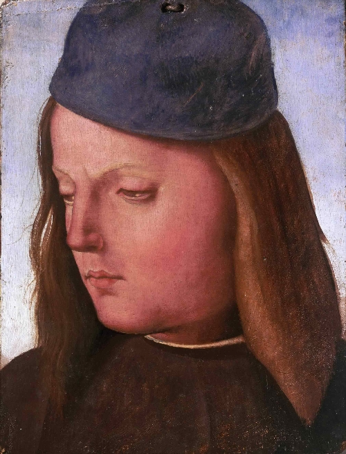 Head of a Boy   Luca Signorelli   oil painting