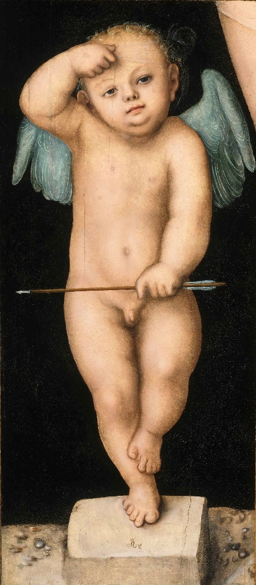 Cupid | Lucas Cranach the Elder | oil painting