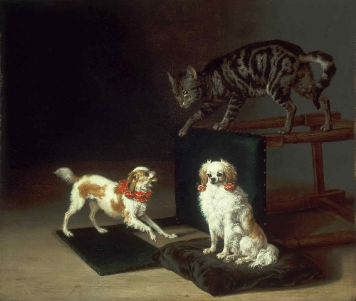 Cat Playing with Two Dogs | Paulus Potter | oil painting