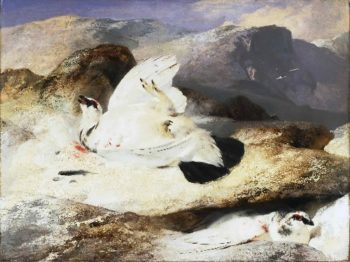 Ptarmigan in a Landscape | Sir Edwin Landseer | oil painting