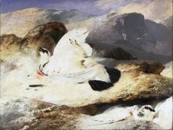 Ptarmigan in a Landscape | Sir Edwin Landseer | oil painting