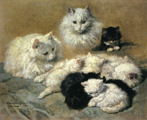 Cats and Kittens | Henriette Ronner Knip | oil painting