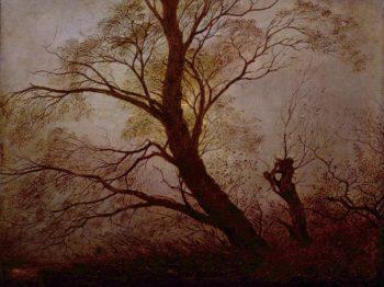 Trees in the moonlight | Caspar David Friedrich | oil painting
