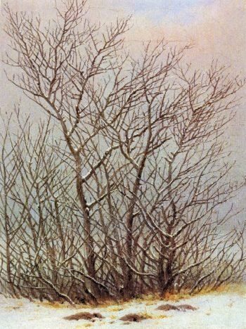 Baume und Straucher im Schnee (1828) | Caspar David Friedrich | oil painting