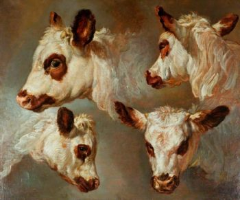 Four Studies of Heads of Cattle | George Morland | oil painting