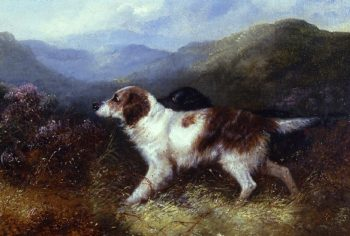 Two Setters in a Landscape | George Armfield | oil painting