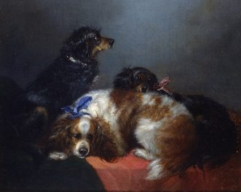 Two King Charles Spaniels and a Terrier | George Armfield | oil painting