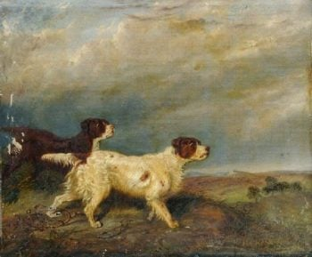 Two Hunting Dogs | George Armfield | oil painting