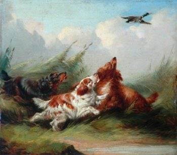Three Spaniels and a Flying Mallard | George Armfield | oil painting