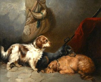 Spaniels in a Barn Interior | George Armfield | oil painting