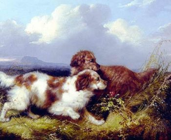 Spaniels Flushing Game | George Armfield | oil painting