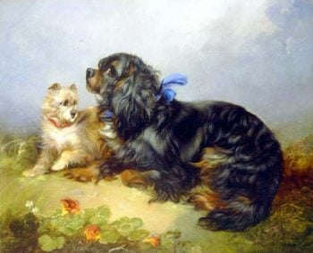 King Charles Spaniel and a Terrier | George Armfield | oil painting