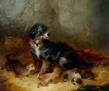 Dog with Puppies | George Armfield | oil painting