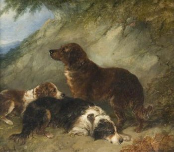 Dogs | George Armfield | oil painting
