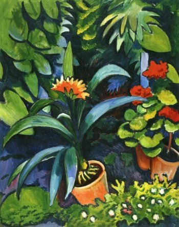 Flowers in the Garden, Clivia and Geraniums August Macke