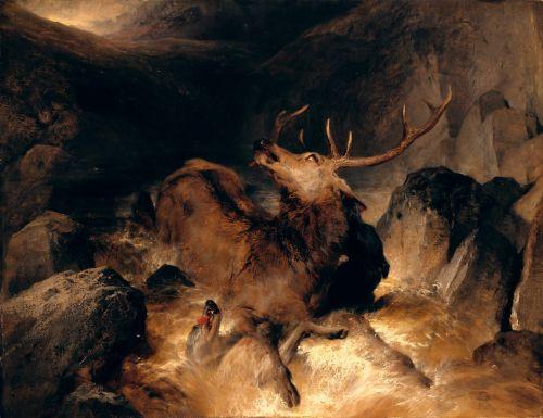 Deer and Deer Hounds in a Mountain Torrent | Sir Edwin Henry Landseer | oil painting