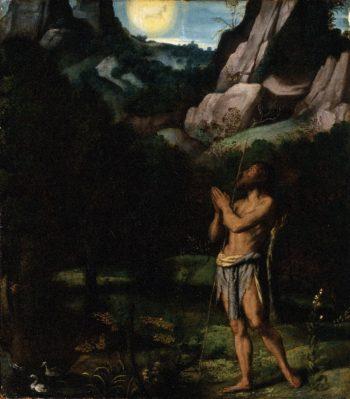 St. John the Baptist in the Wilderness | Moretto da Brescia | oil painting