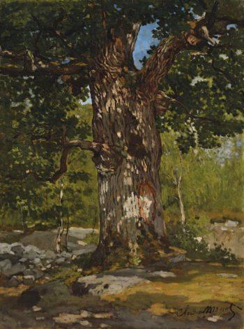 The Bodmer Oak 1865   Claude Monet   oil painting