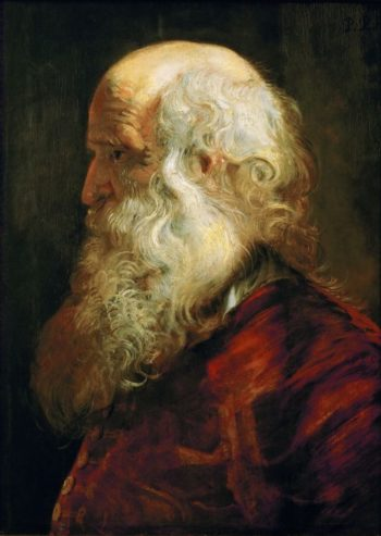 Study of an Old Man | Peter Paul Rubens | oil painting