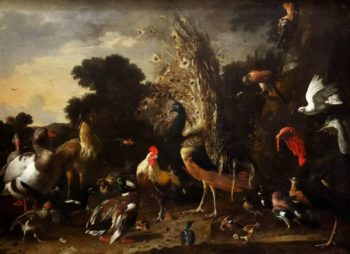 The Poultry Yard with Rooster Peacock and Turkey | Melchior de Hondecoeter | oil painting