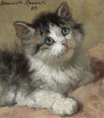 An Inquisitive Kitten 1893   Henriette Ronner Knip   oil painting