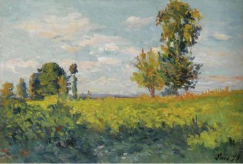 Fields 1905 | Maximilien Luce | oil painting