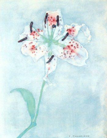 Lily | Piet Mondrian | oil painting