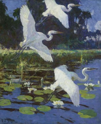 Herons and Lilies 1934 | Frank Weston Benson | oil painting