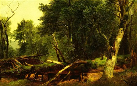 Forest Scene In The Catskills | Asher Brown Durand | oil painting