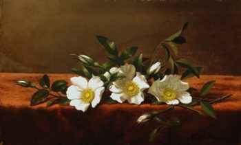 Cherokee Roses | Dwight William Tryon | oil painting