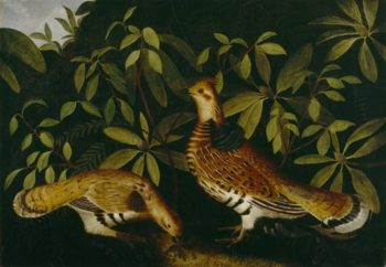 Two Ruffed Grouse In Underbrush | Rubens Peale | oil painting